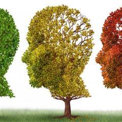 Τι είναι η νόσος Alzheimer
